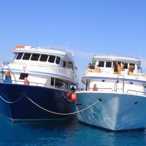 Екскурсія підводним плаванням тиран Шарм