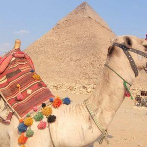 Экскурсия в Каир Гизу из Шарм Эль Шейха
