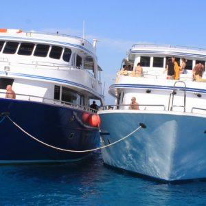 Ausflug zum Schnorcheln in Tiran von Sharm El Sheikh
