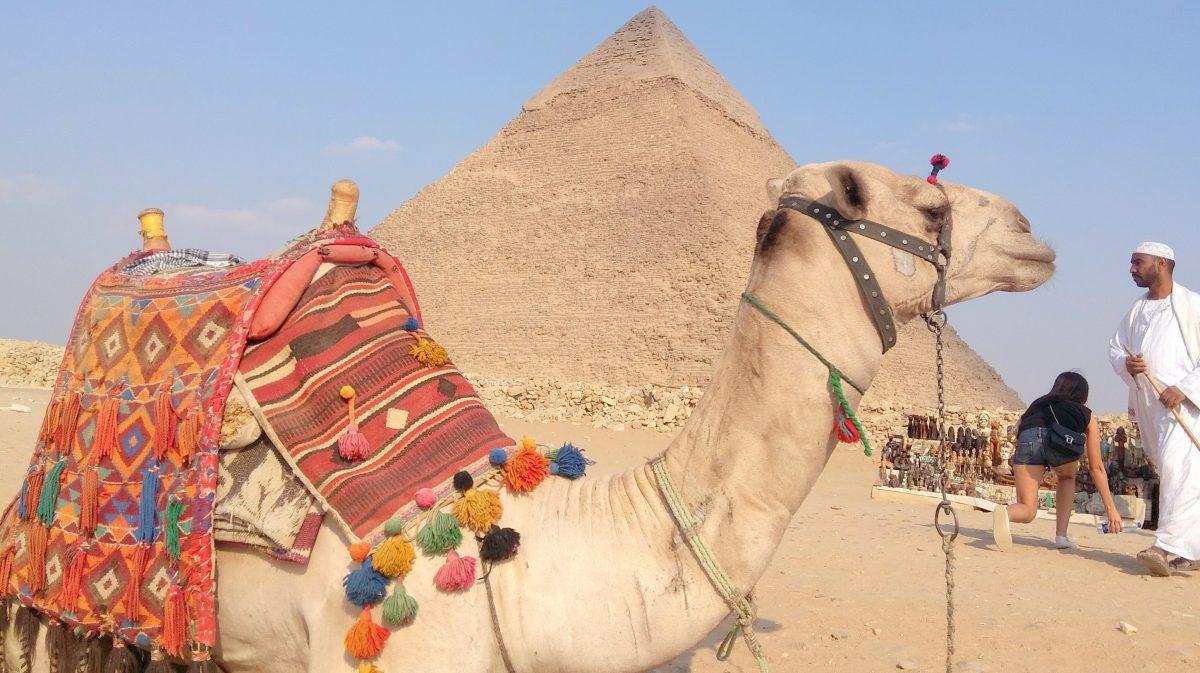 Wycieczka do Kairu-Giza z Szarm el-Szejk