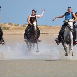 Excursion sea horseback riding in Hurghada