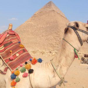 Excursión a El Cairo-Giza desde Sharm El-Sheikh