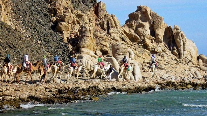 Excursion Abu Galum and Blue Hole from Sharm El-Sheikh