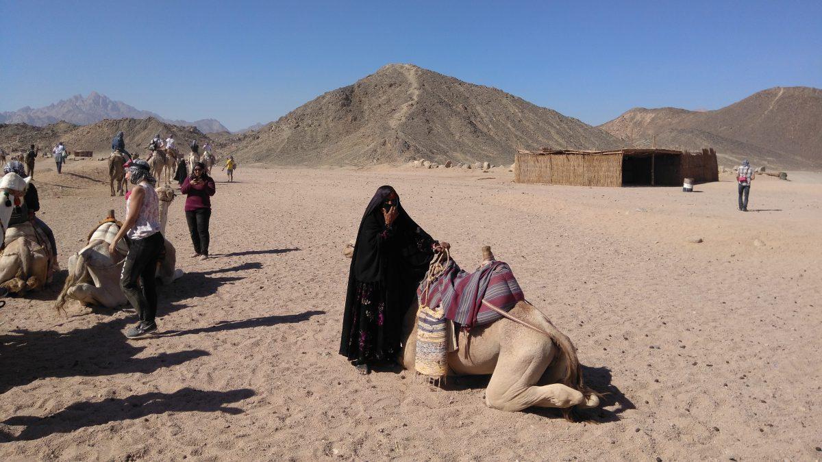 Mega Safari Excursion Sharm El Sheikh
