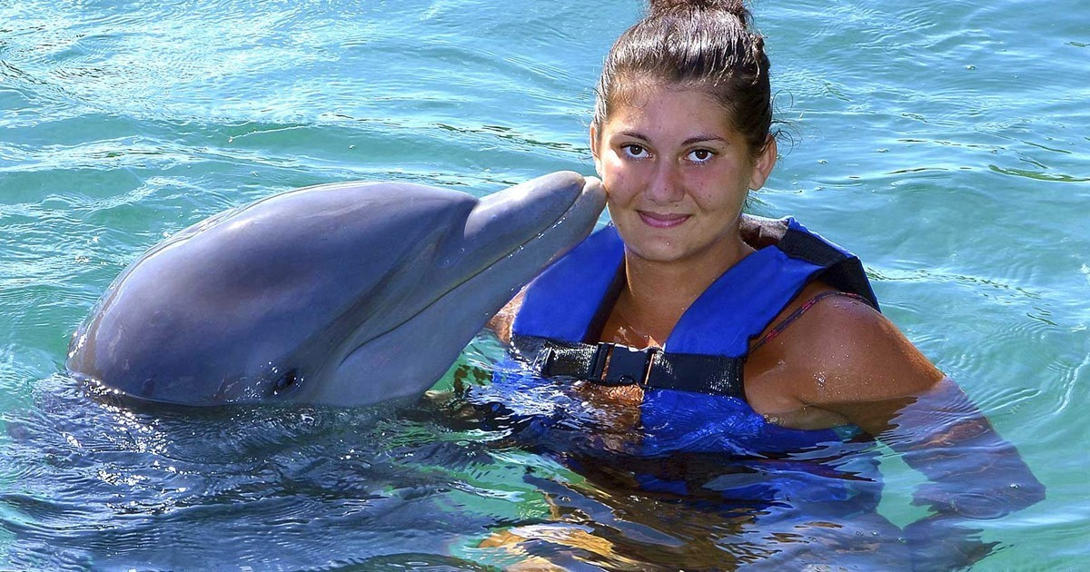 Swimming trip with dolphins in Sharm El Sheikh
