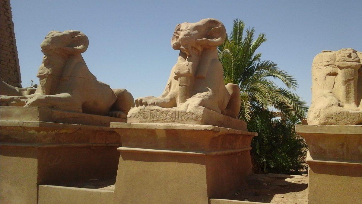 Luxor Overnight Trip Cairo Plane