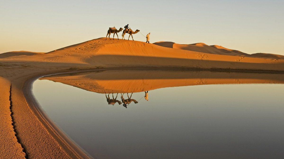 Safari-turer i Sharm el Sheikh