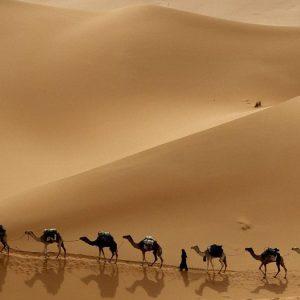 Escursioni Safari nel deserto di Hurghada